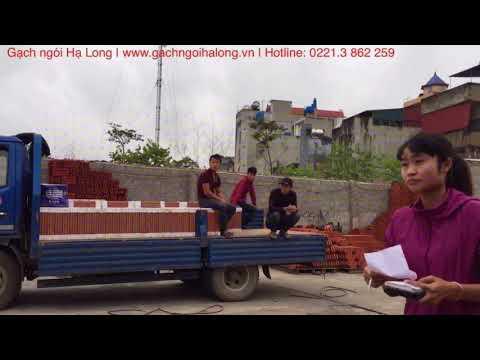 Gạch Ngói Hạ Long Tại Cty Đức Thắng | Gạch Ngói Hạ Long | GachngoiHaLong.vn | Liên Hệ 02213. 862 259