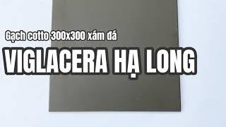 Gạch cotto 300x300 Viglacera Hạ Long xám đá. Gạch cotto Viglacera Hạ Long,Gạch lát Viglacera Hạ Long